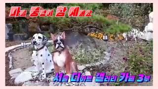 (마을 풍경이 참 예뻐요) 퇴촌풍경 서울 디아트 갤러리…