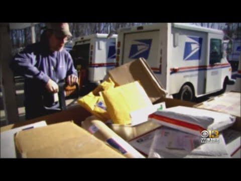 Protesters Rally At Baltimore Post Office In Support Of USPS