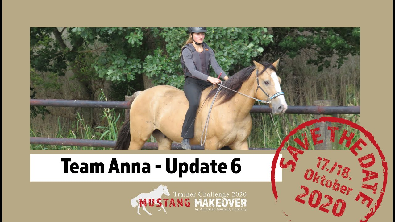 Mustang Makeover 2020 - Team Anna (TAG  4981) - Update 6