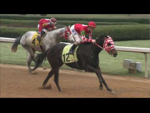 Oaklawn Today Replay Show Jan. 14 2017 Pippin Stakes