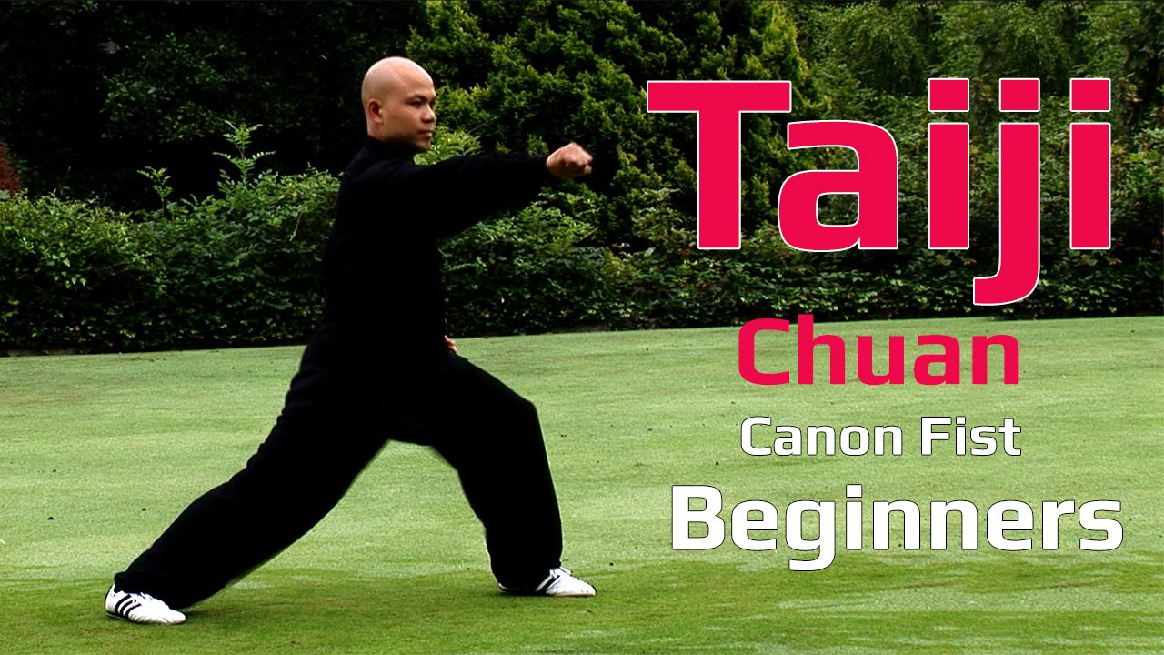 Remarkable, Cannon fist kung fu style for