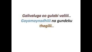 Gaalivaluga/oo gulabivali (agnathavasi) song lyrics
