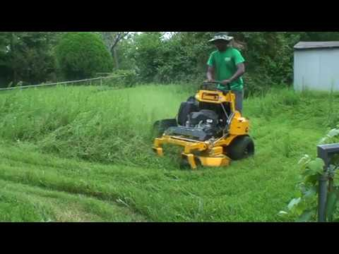 New customer, mowing Overgrown lawn with Wright St