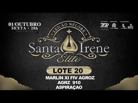 LOTE 20 Marlin XI FIV Agroz   AGRZ9 910