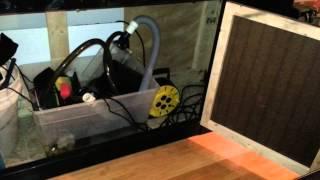 125 Gallon Saltwater Reef Tank Build Update #2