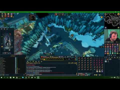 RS3 Dutch revolutions clan - pet hunting (armadyl)- stream