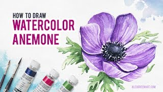 Watercolor Anemone. How to draw flowers.