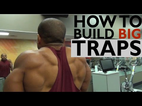 HOW TO BUILD BIG TRAPS 3 MUST DO EXERCISES