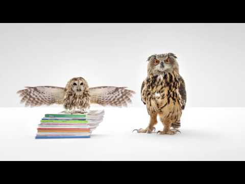 WGU Air Quotes Commercial