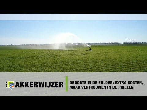 Droogte in de polder: Extra kosten, maar vertrouwen in de prijzen
