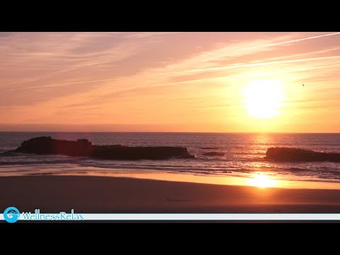 Sunset on the Beach - Waves, Ocean, Dolphins & Seagulls Sounds for Relaxation