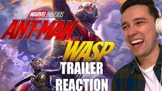 Ant-Man and the Wasp TRAILER REACTION (WASP KICKS ASS)