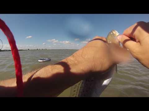 Fishing Carancahua Bay -  Port Alto Texas