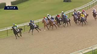 Vidéo de la course PMU PRIX DU BERGERET