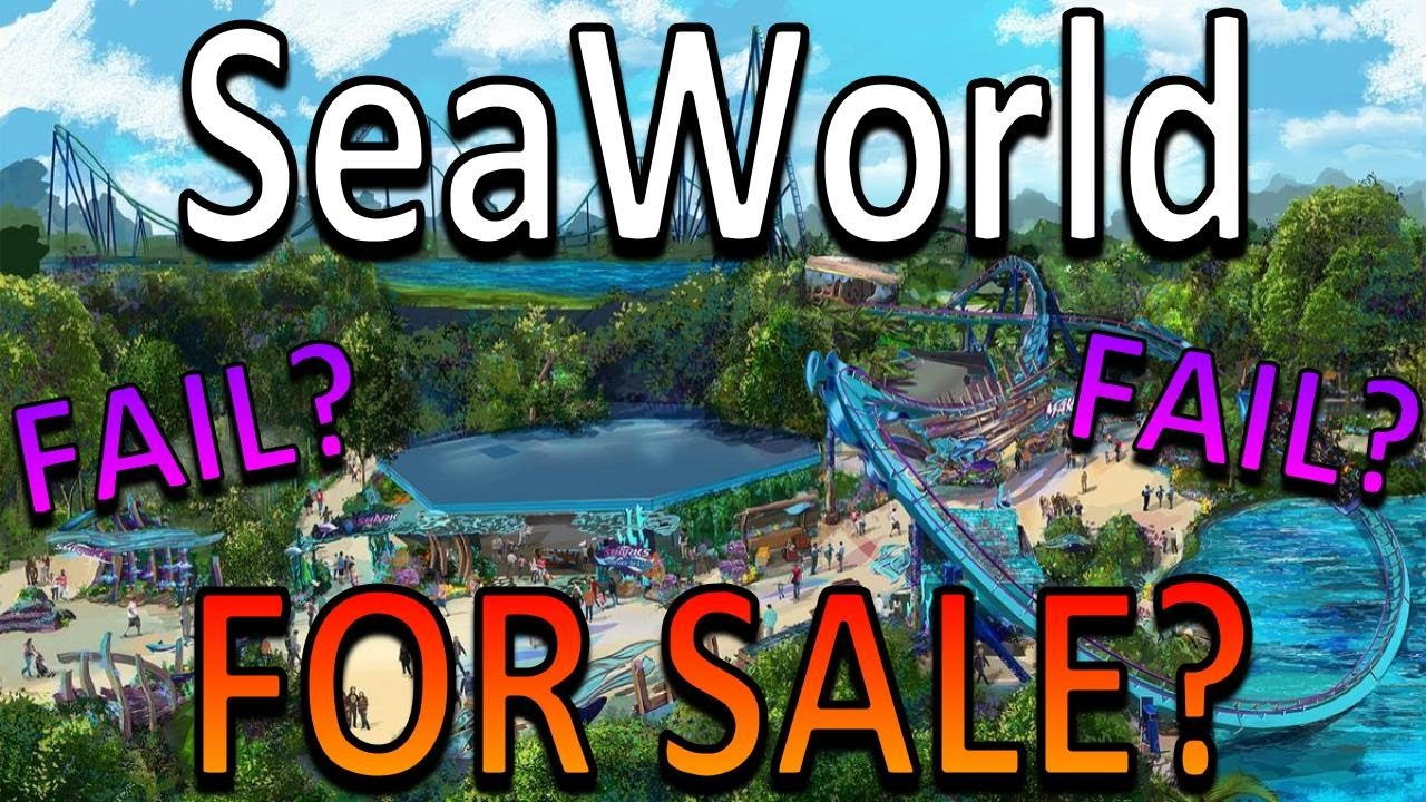 What Really Happens if SeaWorld Dies?