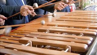 Musica tropical con marimba