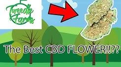 BEST CBD FLOWER??!! Tweedle Farms -Therapy!
