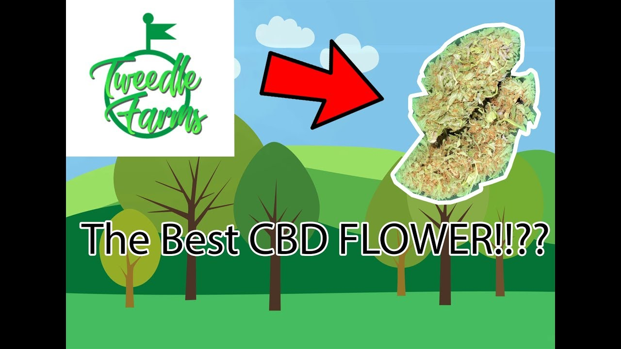 BEST CBD FLOWER??!! Tweedle Farms -Therapy!