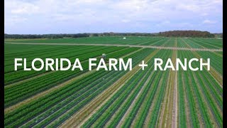 Florida Farm + Ranch for Sale | 9,819 Acres | FLAVIP.com