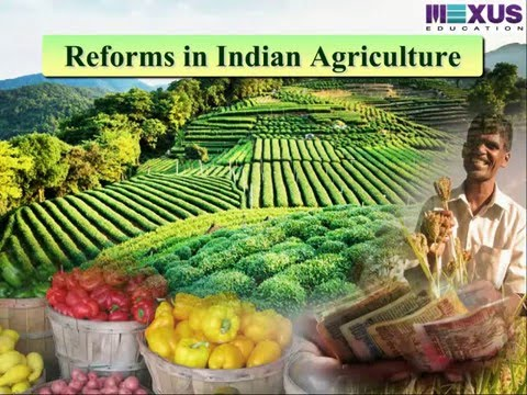 globalisation and indian agriculture