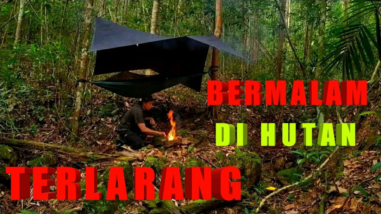 BUSHCRAFT INDONESIA OVERNIGHT IN INDIGENOUS FOREST - CAMPING INDONESIA OVERNIGHT - BERMALAM DI HUTAN