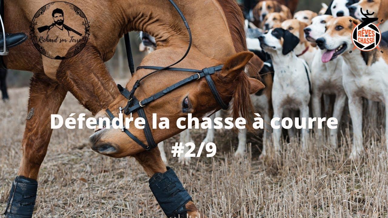 Copie de RIP pour les animaux : Défendre la chasse à courre #2/9