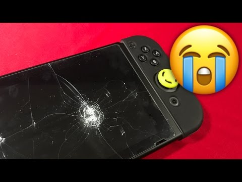 Nintendo Switch Screen Protector Review