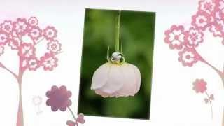 Свадебная подушечка для колец Gilliann Jane PIL246