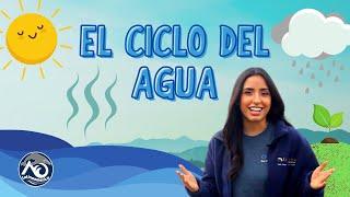 El CICLO DEL AGUA | AO Latinoamérica