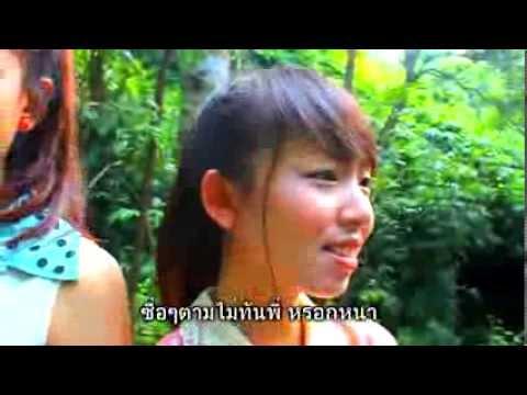 ภูมิแพ้กรุงเทพ  ป้าง นครินทร์ - (Feat. ตั๊กแตน ชลดา) MV new version
