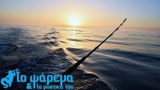 Tuna Fishing In Limassol