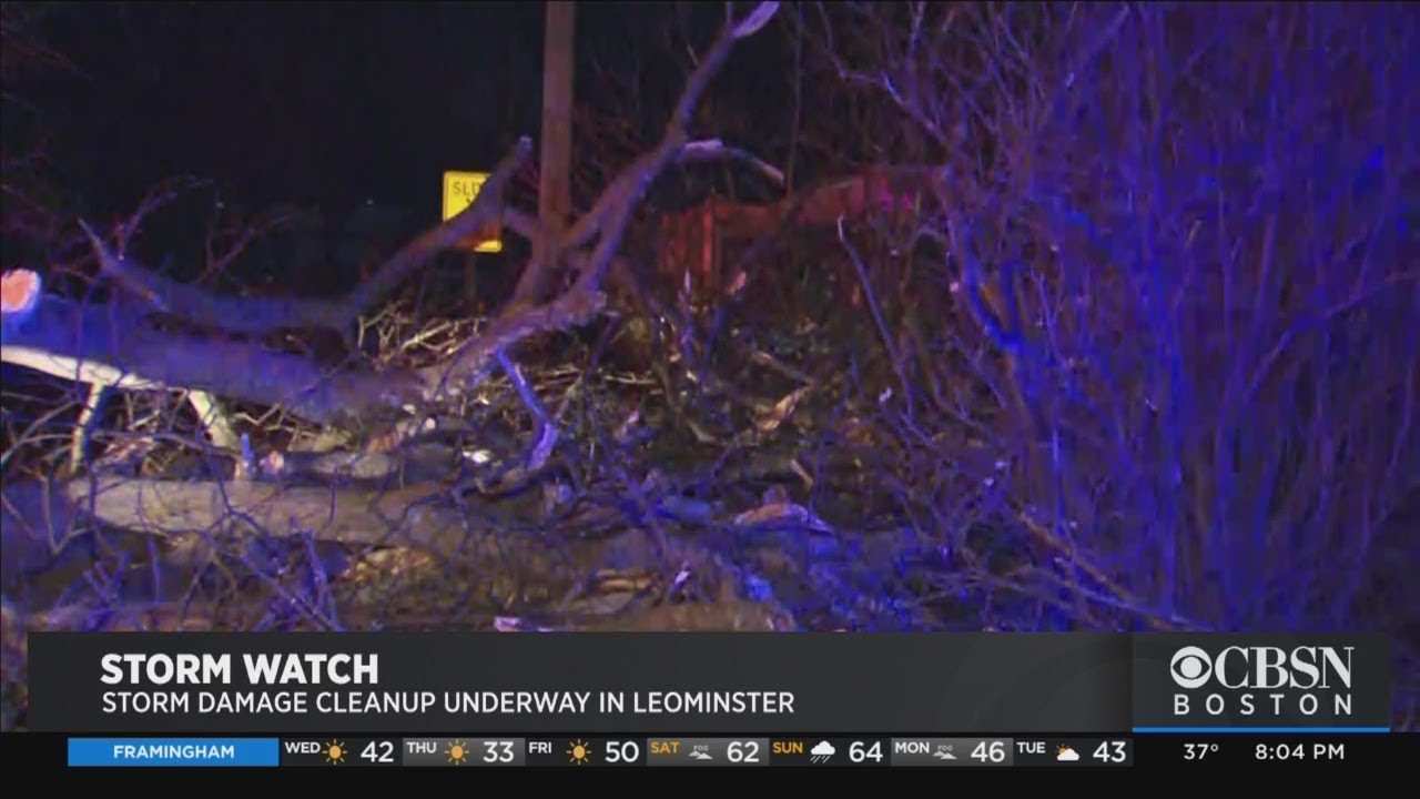 Lightning Strikes Tree, Knocks Out Power During Snow Squall In ...