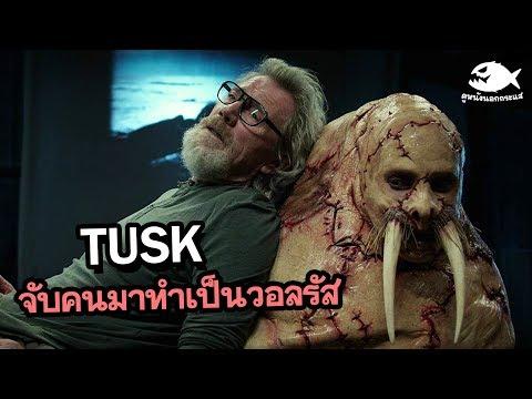 Tusk จับคนมาทำเป็นวอลรัส | ดูหนังนอกกระแส (โรคจิตเกิน สงสารพระเอกเลย!!)