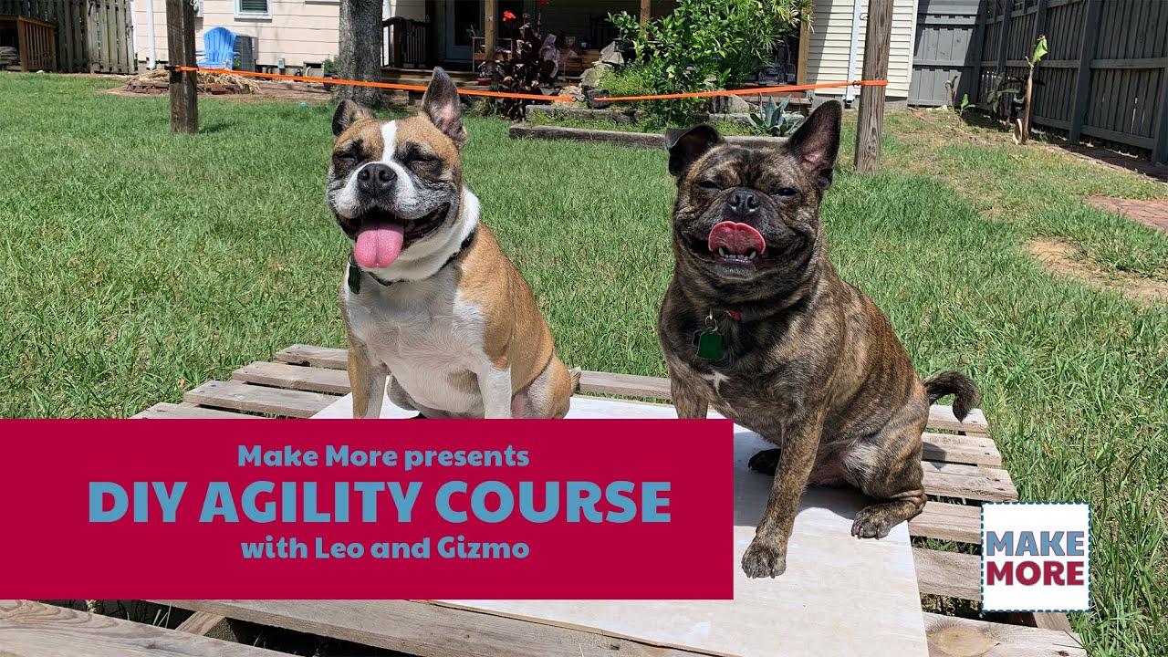 DIY Backyard Dog Agility Course - YouTube