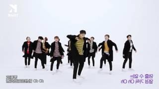 【Freeky中字】[翻轉再翻轉] SEVENTEEN BOOM BOOM 1theK Dance Cover Contest