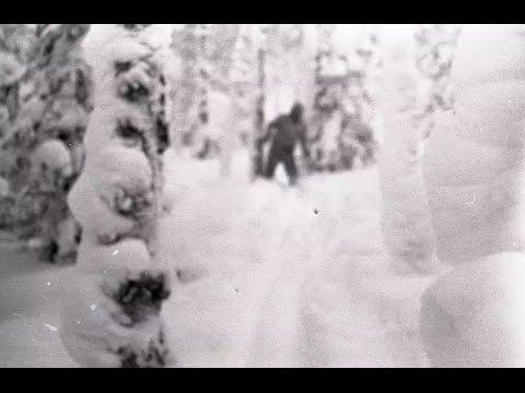 Discovery-Перевал Дятлова гипотеза