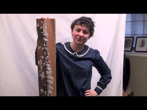 Emily Heaton- Mountain View Sterling Scholar Visual Arts 2015