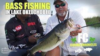 Топуотер бас риболовля на озері Окічобі - Хроніки у Флориді футів. Bassonline.com