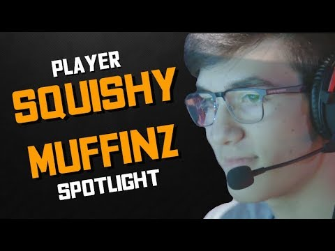 Squishy Muffinz Monitor : Rocket League - Player Spotlight: Squishy Muffinz - YouTube