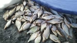 Открытие зимней рыбалки в Свердловской области. 24.11.2019