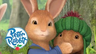 Peter Rabbit - Benjamin the Genius  Cartoons for Kids