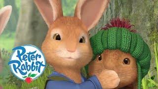 Peter Rabbit - Benjamin the Genius   Cartoons for Kids