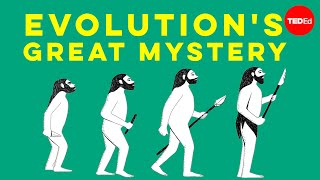 Evolutions great mystery - Michael Corballis
