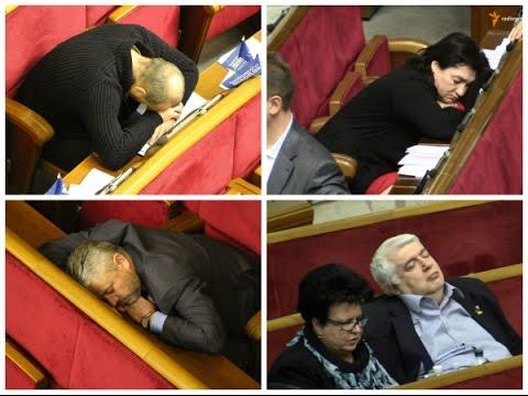 спящие депутаты государственной думы фото