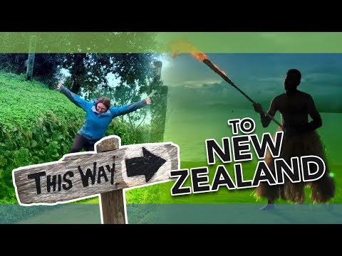 A Glimpse Into Kiwi Life While Studying Abroad