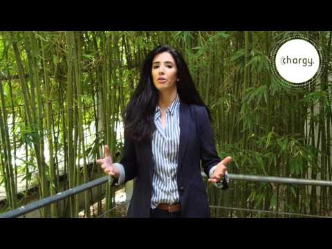 YUZZ Universidad Complutense de Madrid CHARGY