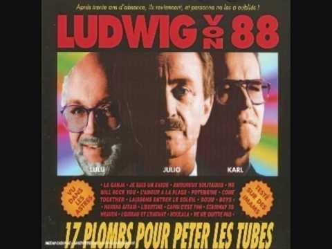 Ludwig von 88 - L'amour à la plage.wmv