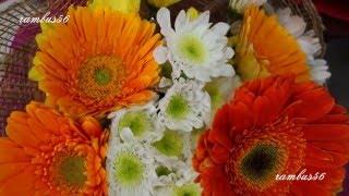 Fresh Flowers Arrangement Part 3 Low Light videos shot with Sony RX-100 M2  1080p 60fps