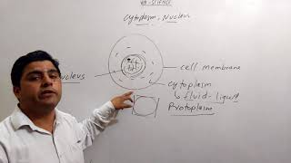 8th science biology cell Cytoplasm ,Nucleus in hindi ,english mix