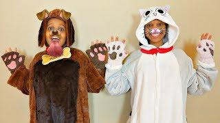 DOG OR CAT? - Onyx Kids